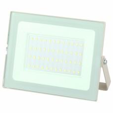 LPR-031-0-65K-050 ЭРА Прожектор светодиодный уличный 50Вт 4000Лм 6500К 183x131x36 белый